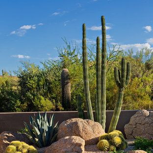 Design ideas for a full sun xeriscape in Phoenix.