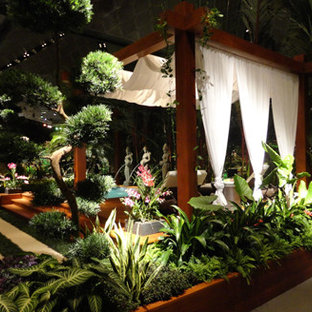 Design ideas for a tropical landscaping in Philadelphia.