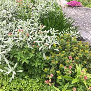Rustikaler Vorgarten mit Gartenweg, direkter Sonneneinstrahlung und Natursteinplatten in New York