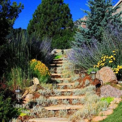 Design ideas for a traditional rock hillside landscaping in Denver.