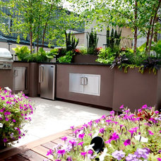 Contemporary Landscape by Chicago Green Design Inc.
