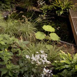 Design ideas for a contemporary landscaping in Amsterdam.