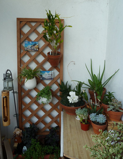 Сад Small Gardens