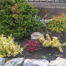 Traditional Landscape Small rock garden in Buffalo