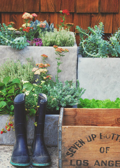 Shabby-chic Style Landscape by DIY Edible Gardens