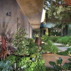 Contemporary Landscape by Prestige Builders