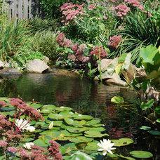 Traditional Landscape by Soergel Landscapes, Aquascapes, Florascapes