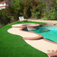 Landscape by Synthetic Turf International