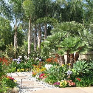 This is an example of a large tropical full sun side yard driveway in San Diego.