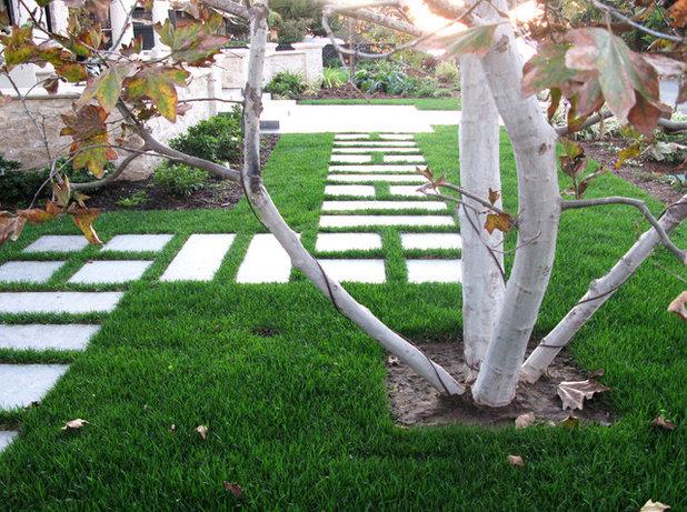 Minimalistisch Garten by debora carl landscape design
