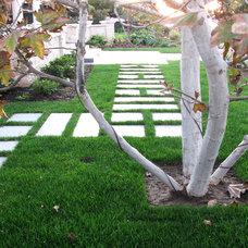 Modern Landscape by debora carl landscape design