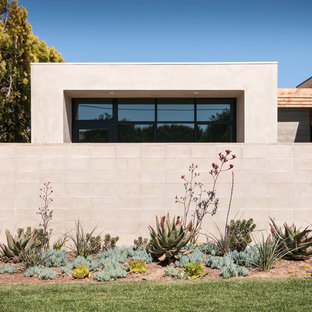 This is an example of a contemporary front yard landscaping in San Diego.