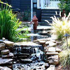 Traditional Landscape by Homescape Pros