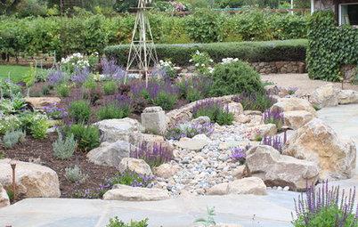 Gärtnern nach Xeriscaping – das sollten Sie darüber wissen