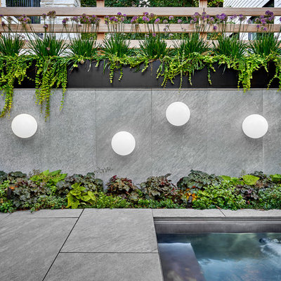 Design ideas for a contemporary backyard landscaping with decking.