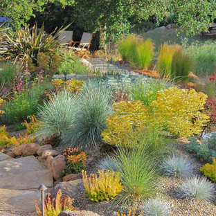 This is an example of a contemporary back xeriscape garden in San Francisco.