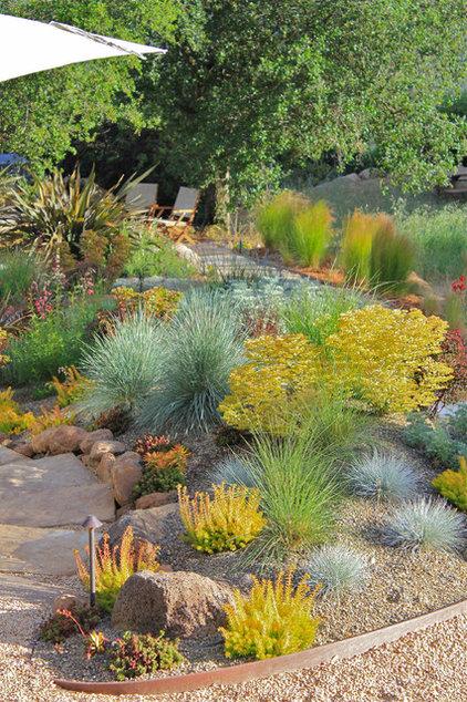 Contemporary Landscape by Urban Botanics