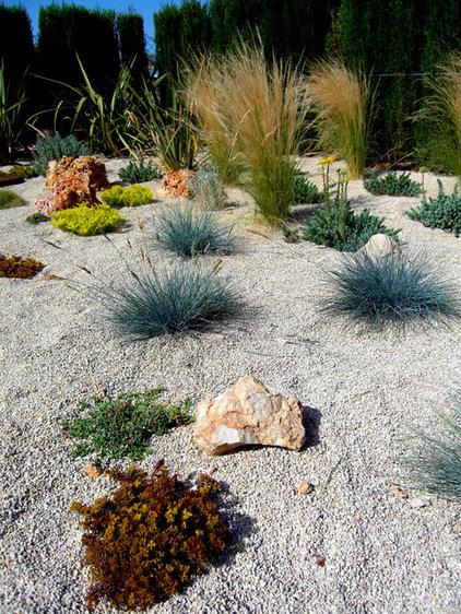 Mediterranean Landscape by Simbiosi
