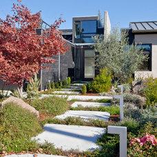 Modern Landscape by Elevation Architects
