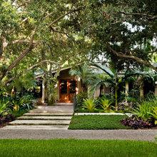 Tropical - South Florida
