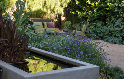 Houzz Call: Are You Letting Go of Your Lawn?
