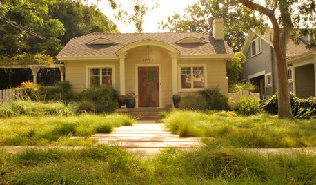Meet a Lawn Alternative That Works Wonders
