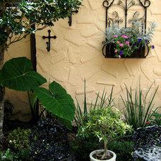 Traditional Landscape by Tampa Landscape Design