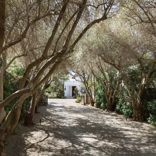 This is an example of a traditional front driveway garden in Los Angeles with gravel.
