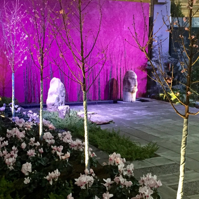 Southern Spring Home and Garden Show Entry 2016:  Spring in Japan