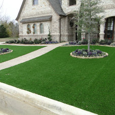 Contemporary Landscape by Texas Turf Solutions