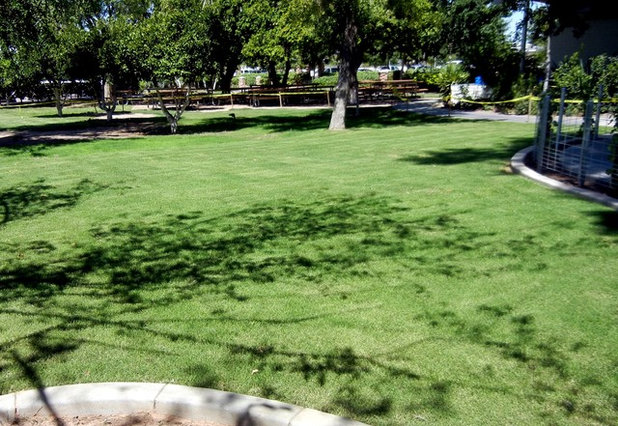 Traditional Landscape by Noelle Johnson Landscape Consulting