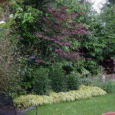 Traditional Landscape by Scot Ragsdale Landscape Design