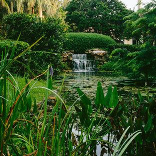 Foto di un laghetto da giardino tropicale