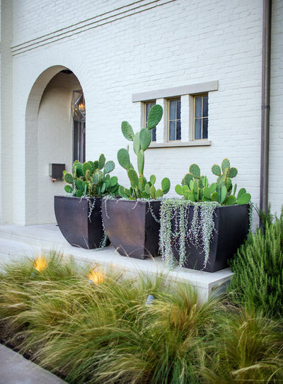 Transitional Landscape by AquaTerra Outdoors