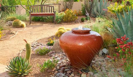 Get the Look: Southwestern Desert Garden Style
