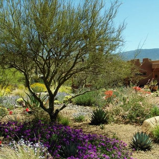 Photo of a southwestern landscaping in Phoenix.