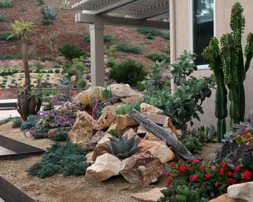 Design Ideas For A Southwestern Landscaping In San Diego.