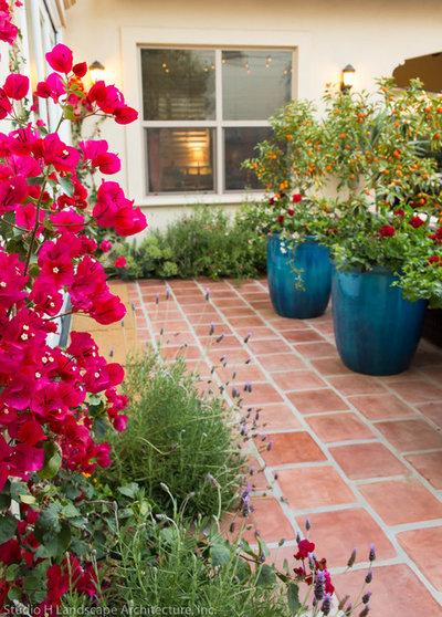 Mediterranean Garden by Studio H Landscape Architecture