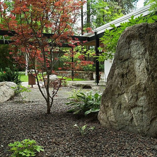 This is an example of a midcentury modern shade landscaping in Other for fall.
