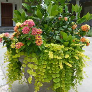 This is an example of a large traditional garden for summer in New York with a container garden.