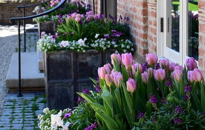 10 Pretty Container Gardens in Pastel Hues