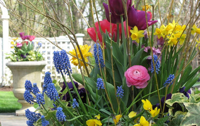 12 Stunning Spring Container Gardens