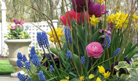 7 consejos para poner la terraza y el jardín a punto de cara al verano