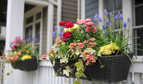 10 Ways to Make the Most of Your Garden This Spring