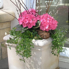 Traditional Landscape by Heidi's Lifestyle Gardens