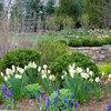 7 typiske fejl, vi begår i haven om foråret