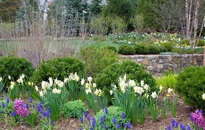 April: Vad du kan göra i trädgården denna månad