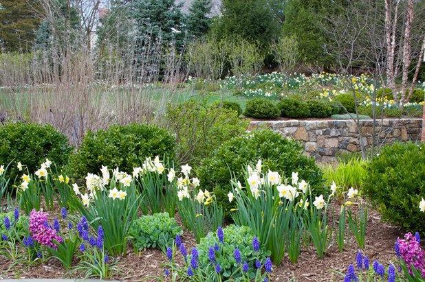 Klassisk Trädgård by The Todd Group