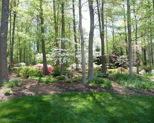 Wooded Landscape | Houzz