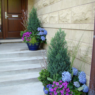 This is an example of a small transitional landscaping in Chicago.